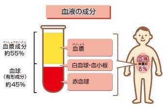 血液の流れが止まると脳は5分で死んでしまう!?