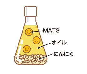 にんにく成分MATSが血栓からあなたの身を守る!