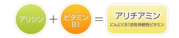 日本人が明らかにした、にんにくの成分と働き