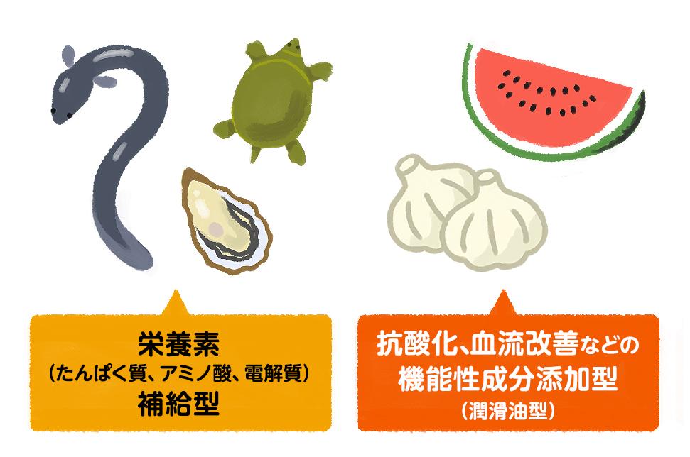 栄養素(たんぱく質、アミノ酸、電解質)補給型/抗酸化、血流改善などの機能性成分添加型(潤滑油型)