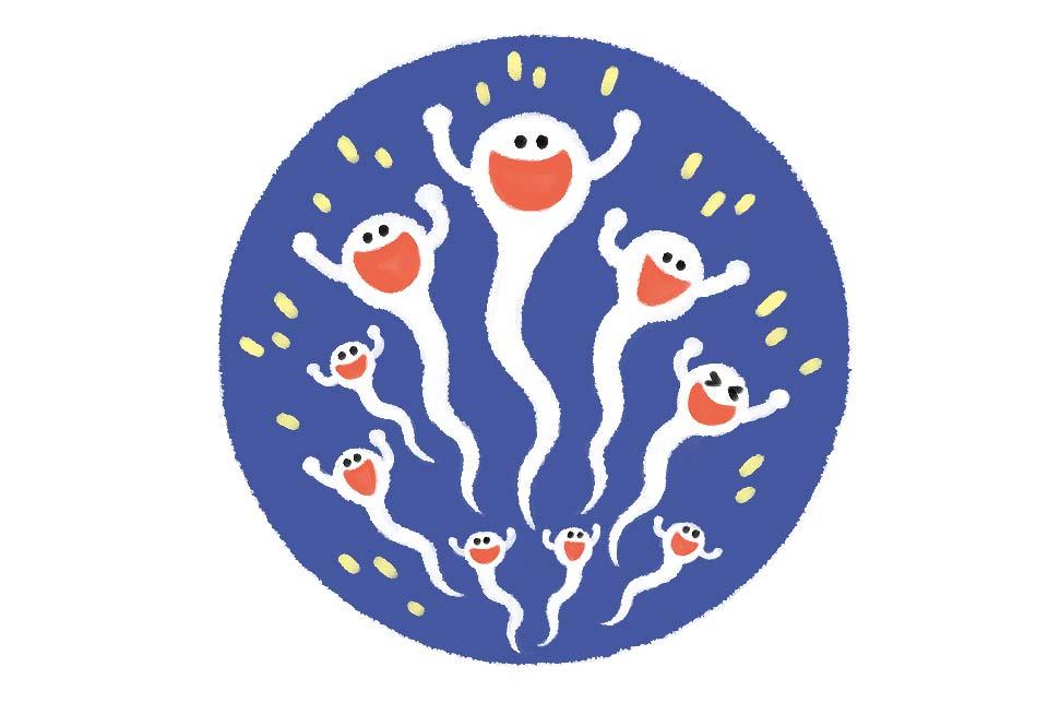 アルギニンの効果:精子の量を増やし、さらに活性化させる働きを持つことも分かっています。