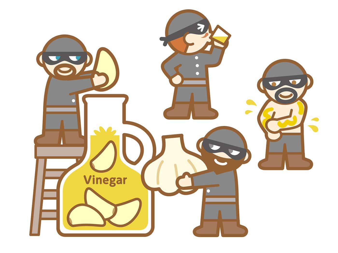 にんにく入りの酢と盗賊